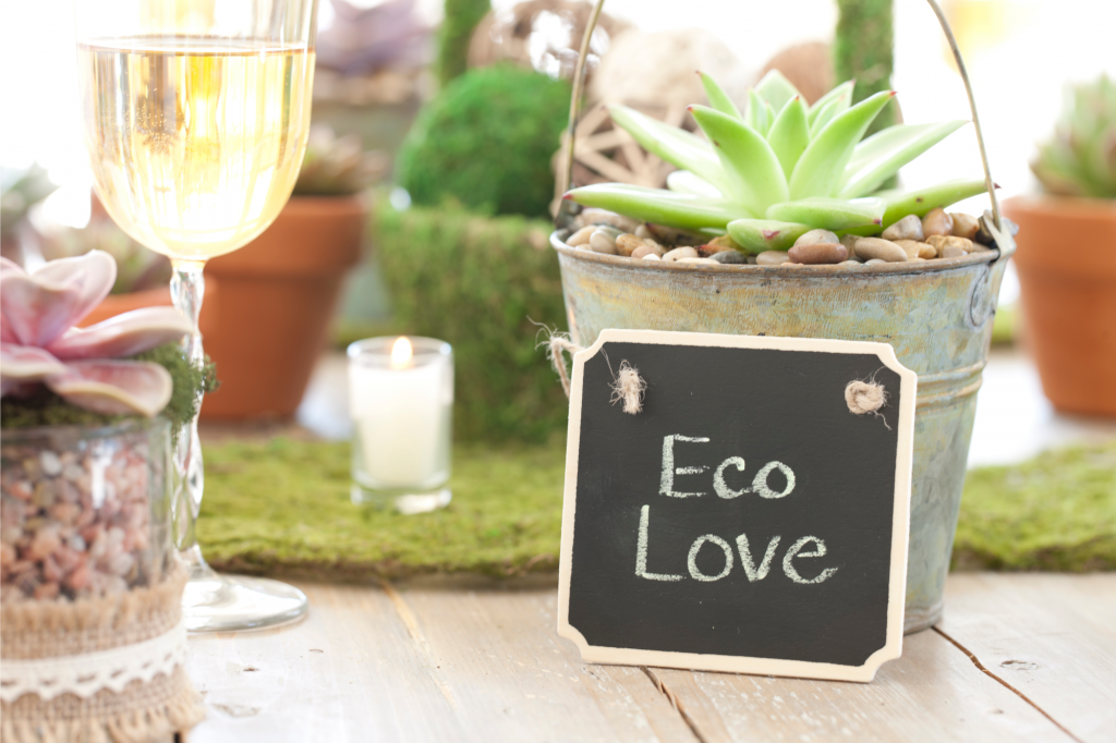 planning an eco wedding with Wide Sky Weddings